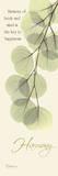 Harmony  Eucalyptus