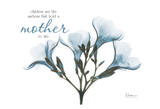 Blue Oleander  Mother