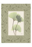 Ginkgo With Green Damask Frame