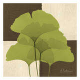 Ginkgo Green Quad