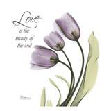 Swaying Tulips Purple  Love