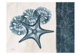 Starfish Sand Dollar Blue