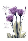 Purple Tulip, Hope Reproduction d'art par Albert Koetsier