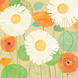 Daisies and Poppies II