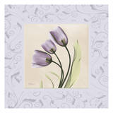 Purple Tulips on Purple Damask
