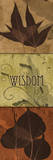 Leaves  Wisdom