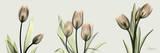 Spring Tulip Triple