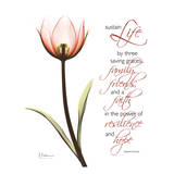 Swaying Tulip Pink  Life