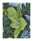 Green Oak Leaves, c.1923 Reproduction d'art par Georgia O'Keeffe