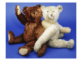 A Fine Steiff White Plush Covered Teddy Bear and a Fine Steiff Rich Cinnamon Plush Covered Teddy