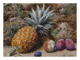 A Pineapple  a Peach and Plums on a Mossy Bank