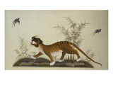An Embroidered Panel of a Tiger Chasing Small Birds Among Bamboo  in Shades of Green & Brown Silks