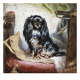 Jeannie  Queen Victoria's Favourite Spaniel
