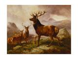 A Proud Stag Giclée par Samuel John Carter