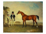 Skiff&#39;  a Bay Racehorse  Held by a Groom on Newmarket Heath  with John Howe  the Owner of the