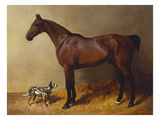 A Bay Hunter and a Spotted Dog in a Stable Interior