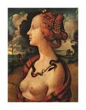 Portrait of Simonetta Vespucci  c 1480