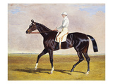Sir Mark Wood's Racehorse 'Lucetta' with J Robinson Up