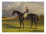 The Earl of Chesterfield's Filly 'Industry'  with W Scott Up  in a Landscape