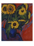 Sunflowers; Sonnenblumen