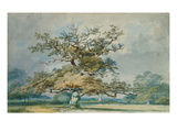 A Landscape with an Old Oak Tree