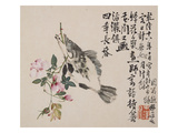 A Page (Fish) from Flowers and Bird  Vegetables and Fruits