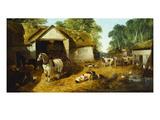 Meopham Farmyard