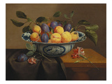 Plums and Apricots in a Wanli Kraak Porselein Bowl with a Carnation  a Rose