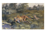 A Vixen with Her Cubs in a Wooded Marshy Landscape