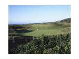Royal Portrush Golf Club  fairway