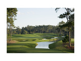TPC Sawgrass Stadium Course  Hole 4