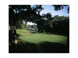 Olympia Fields Country Club North Course  Hole 4