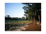 Pinehurst Golf Course No 2  Hole 12