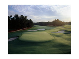 Pinehurst Golf Course No 2  putting green