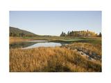 Osprey Meadows Golf Course  Hole 4