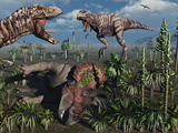 Two T Rex Dinosaurs Confront Each Other over a Dead Triceratops