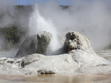 Grotto Geyser Eruption  Upper Geyser Basin Geothermal Area  Yellowstone National Park