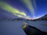 Aurora Borealis over Skittendalen Valley  Troms County  Norway