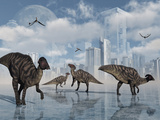 A Group of Parasaurolophus Duckbill Dinosaurs Gather at a Feeding Ground