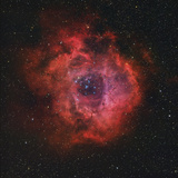 The Rosette Nebula