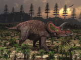 Artist&#39;s Concept of Triceratops