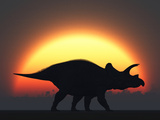 A Silhouetted Triceratops Strolling Past a Setting Sun at the End of a Prehistoric Day