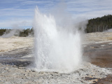 Plume Geyser Eruption  Upper Geyser Basin Geothermal Area  Yellowstone National Park  Wyoming
