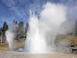 Grand Geyser Erupting  Upper Geyser Basin Geothermal Area  Yellowstone National Park