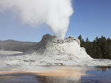 Castle Geyser Steam Phase  Upper Geyser Basin Geothermal Area  Yellowstone National Park  Wyoming