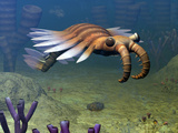 An Anomalocaris Explores a Middle Cambrian Age Ocean Floor