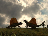 Dimetrodon Fight over Territory