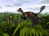 A Feathered Microraptor Perched Atop a Tree Fern