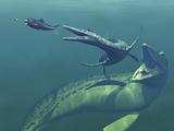 Marine Predators of the Cretaceous Period