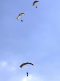 Paratroopers from the Pathfinder Platoon Descend Through the Sky